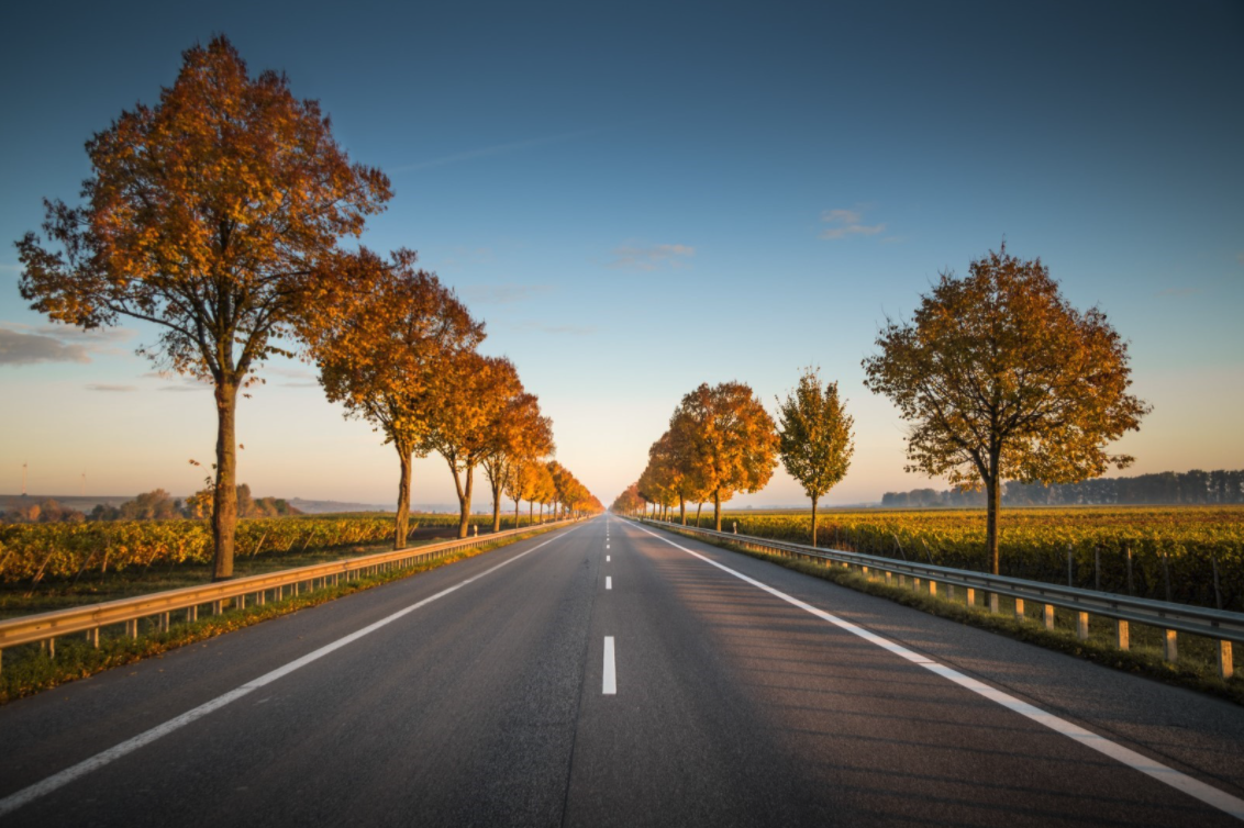 A highway road stretches into the horizon. Fields are on either side and trees line both sides of the road.